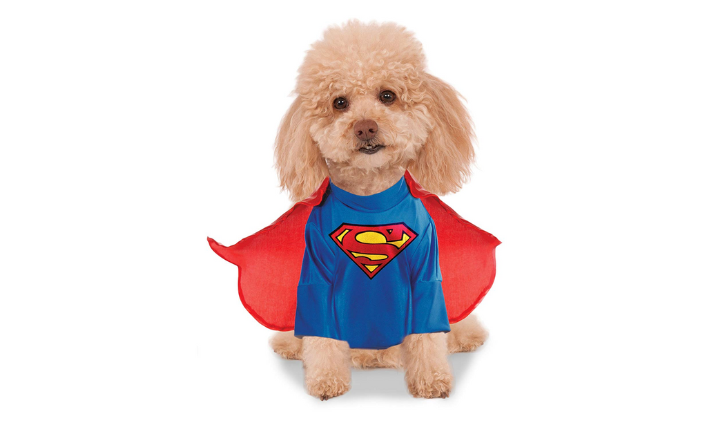 dog costume super man