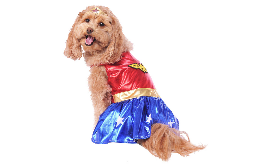 dog costume wonder woman