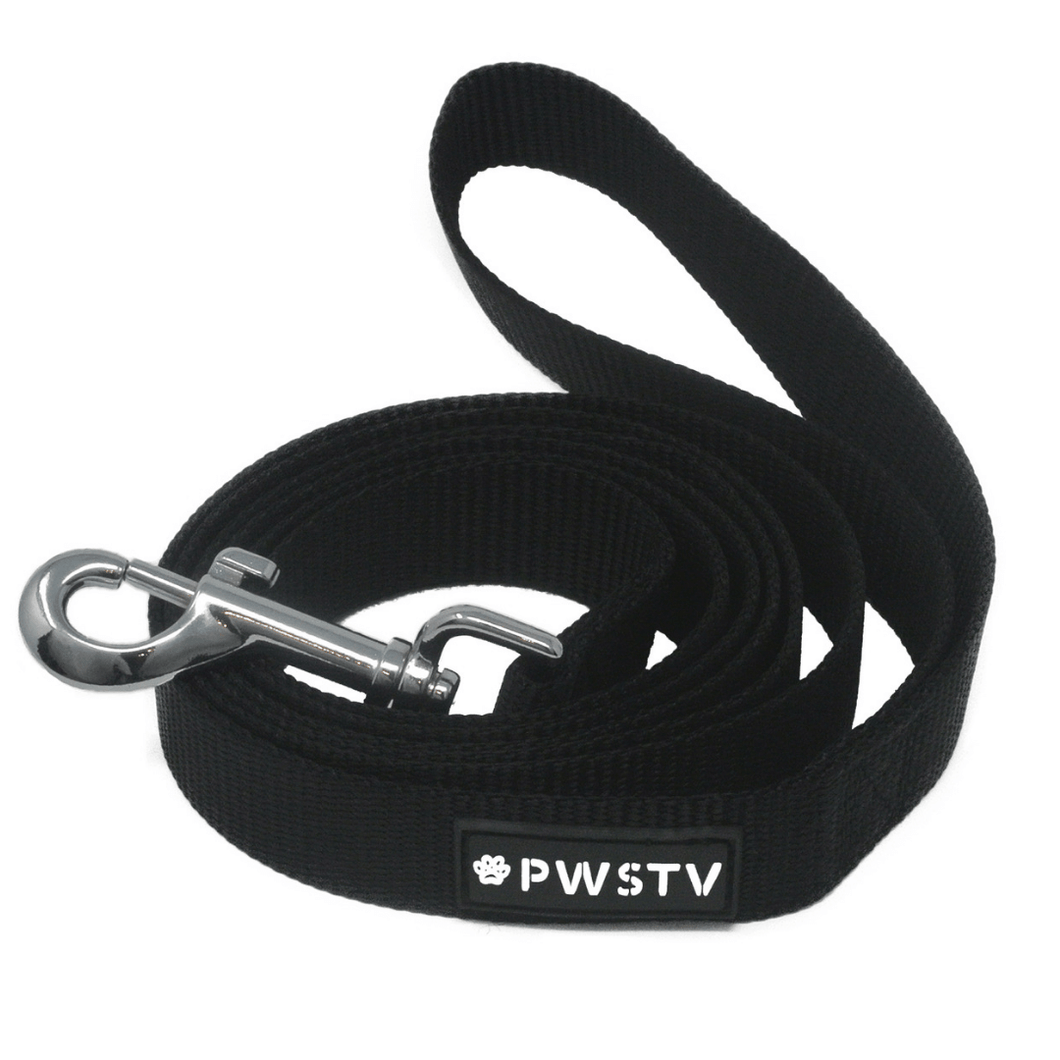 Black Dog Leash Main Image