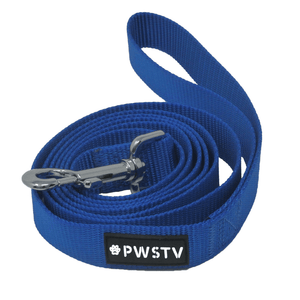 Blue Dog Leash Main Image