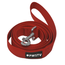 Red Dog Leash Main Image