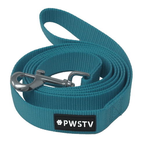 Turquoise Dog Leash Main Image