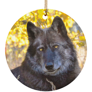 Ceramic Circle Ornament, Navi