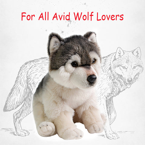 Cute Cuddly Wolf Plush Toy