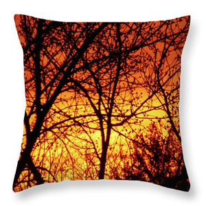 Sunshine In Montreal - Coussin