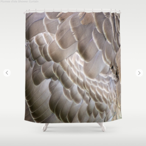 Shower Curtain - Plumes Doies - Shower Curtain