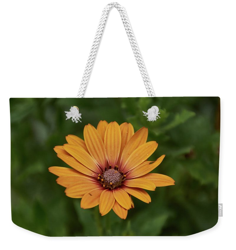 Beautiful Flower - Weekender Tote Bag - 24 X 16 / White - Weekender Tote Bag