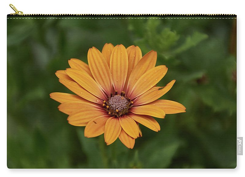 Beautiful Flower - Carry-All Pouch - Large (12.5 X 8.5) - Carry-All Pouch