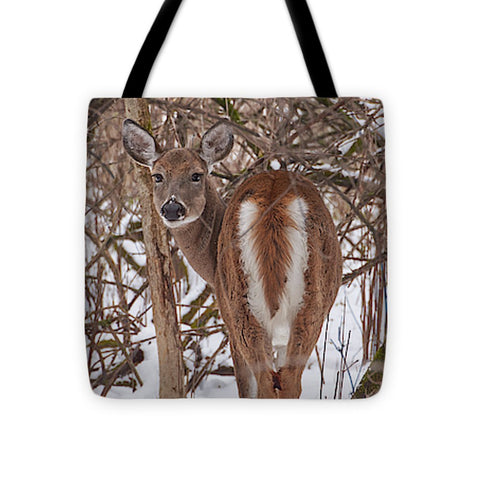 Image of Chevreuil - Tote Bag - 16 X 16 - Tote Bag