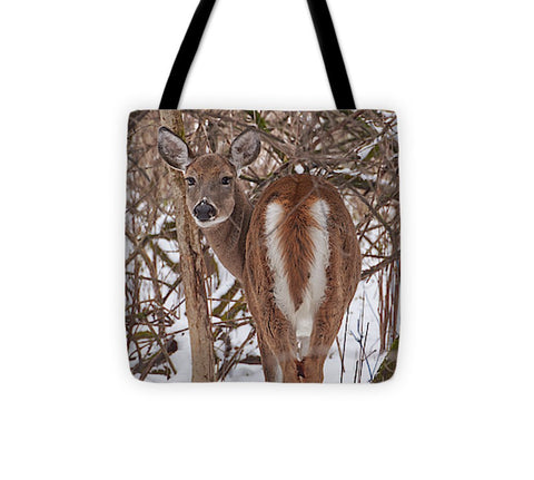 Image of Chevreuil - Tote Bag - 13 X 13 - Tote Bag