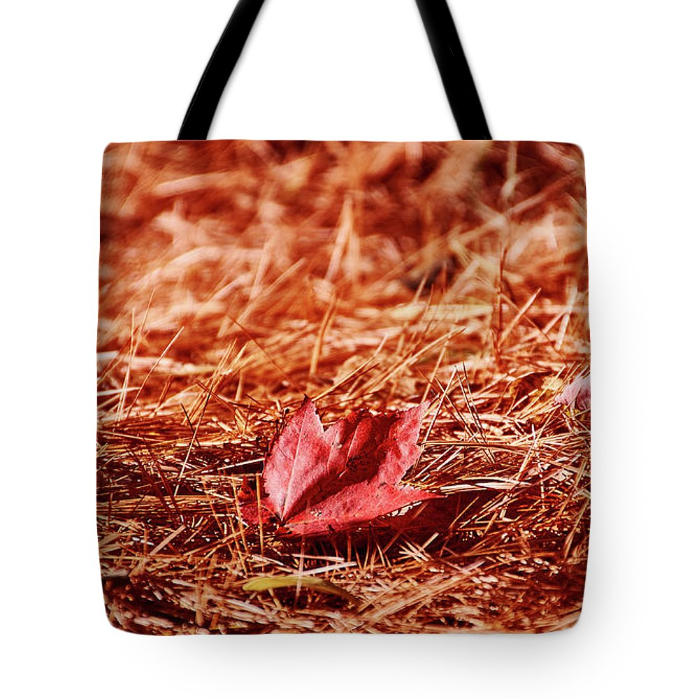 Fall In #canada - Tote Bag - 18 X 18 - Tote Bag