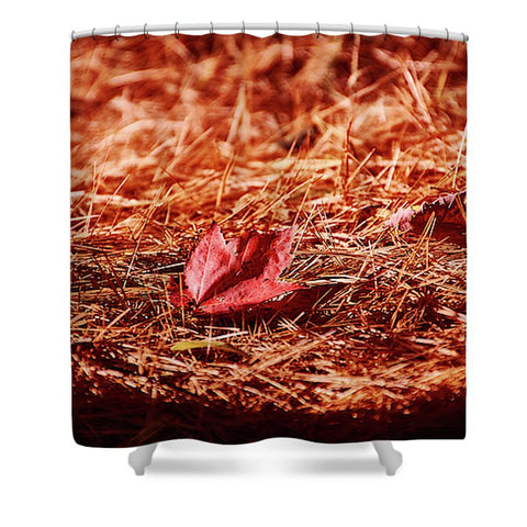 Fall In #canada - Shower Curtain - 71 X 74 Standard - Shower Curtain