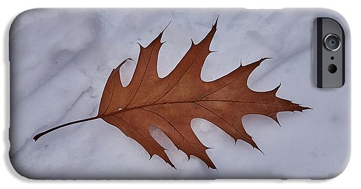 Leaf On The Snow - Phone Case - Iphone 6S Case - Phone Case
