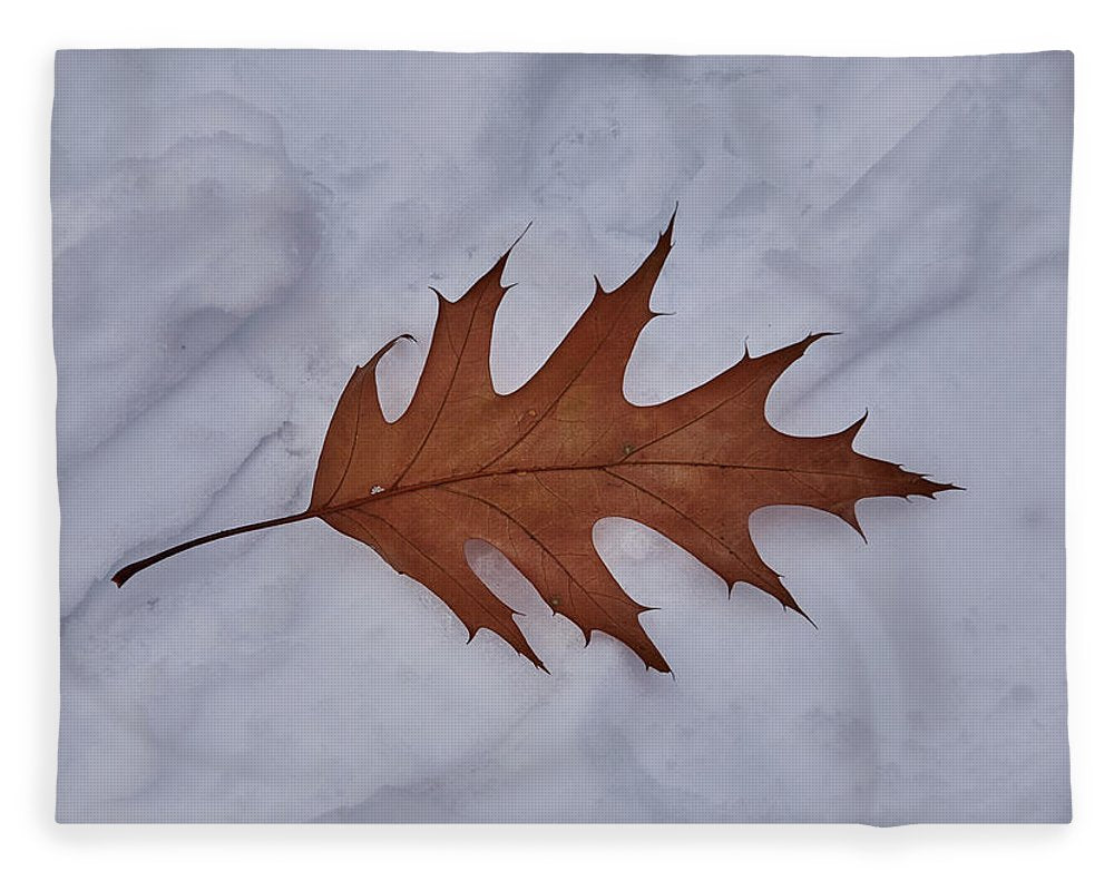 Leaf On The Snow - Blanket - 60 X 80 / Plush Fleece - Blanket