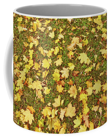 Image of Maple Leafs On The Ground - Mug - Small (11 Oz.) - Mugs