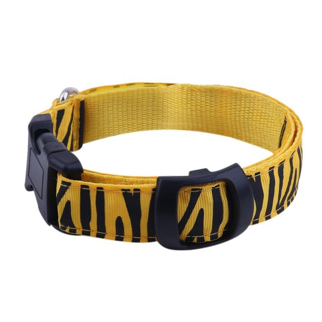 Led Dog Collar - Yellow / S - Pet Products
