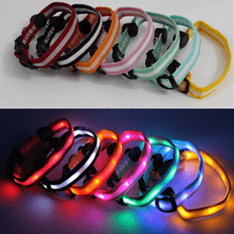 Led Dog Collar - Assorted Colors And Sizes - Orange / Small - Pet Products