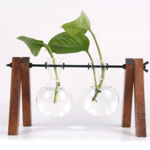 Creative Wooden Frame Hydroponic Green Transparent Glass Vase For Desktop - A2 - Hydroponic