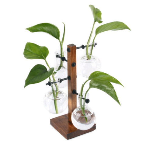 Creative Wooden Frame Hydroponic Green Transparent Glass Vase For Desktop - A4 - Hydroponic