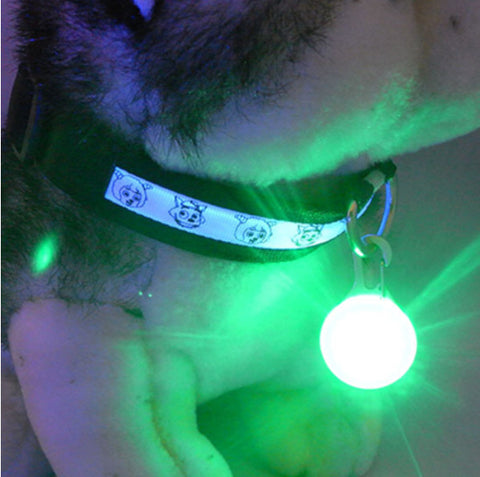Image of Bright Dog Pet Led Night For Safety Promenade - Green - Pet Products