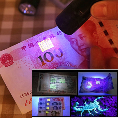 Image of UV Flashlight Black Light, Ultraviolet Torch Blacklight Detector for Dog Urine, Pet Stains and Bed Bug z50