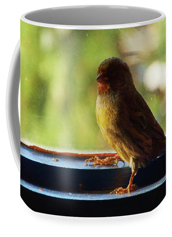 Yellow Bird - Mug - Large (15 Oz.) - Mugs