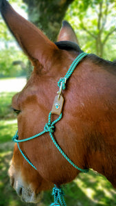 Breakaway Rope Halter - Elk Hollow Designs