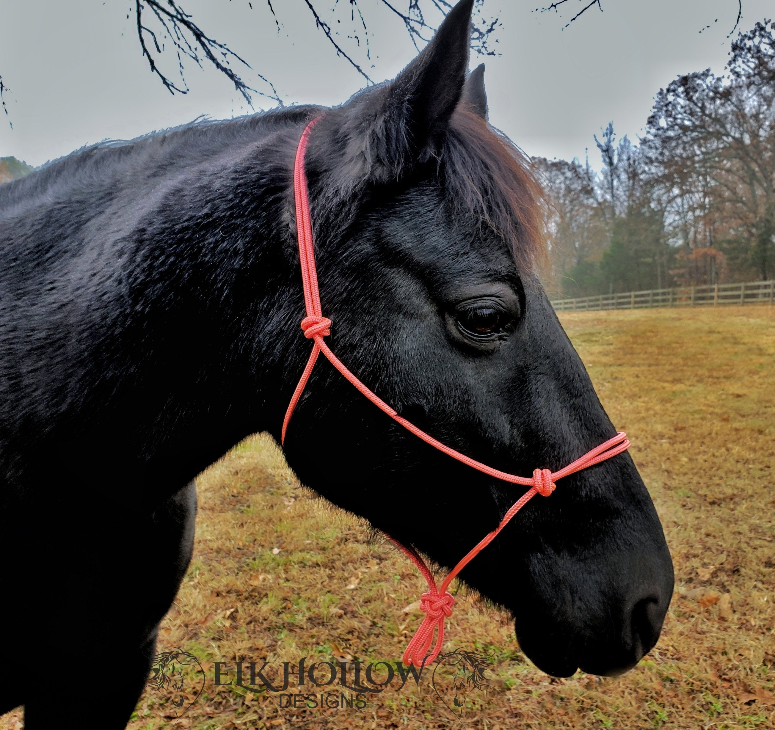 Clinician Rope Halter - Elk Hollow Designs