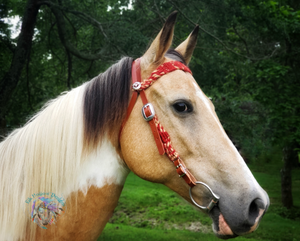 Mohair and Leather Headstall - Elk Hollow Designs