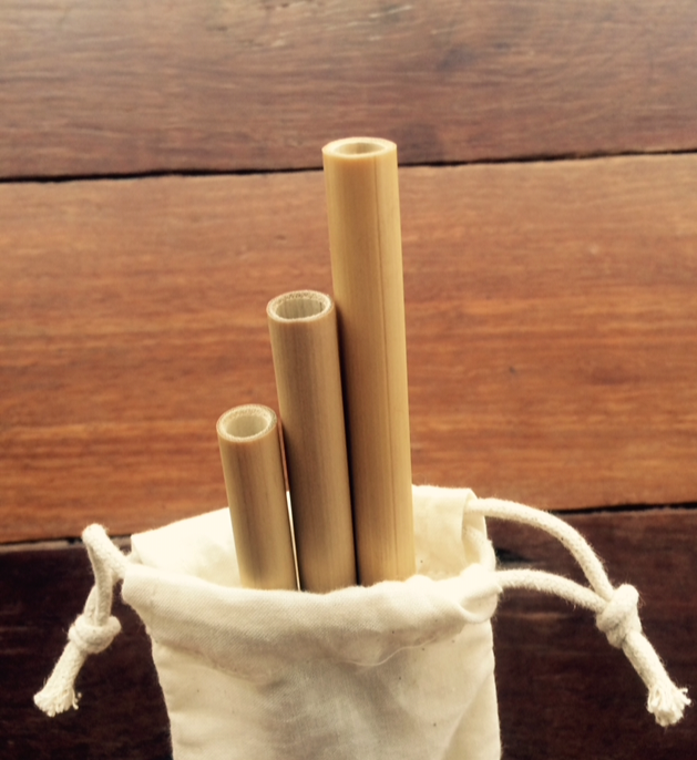 Reusable Bamboo Straws 3 pack