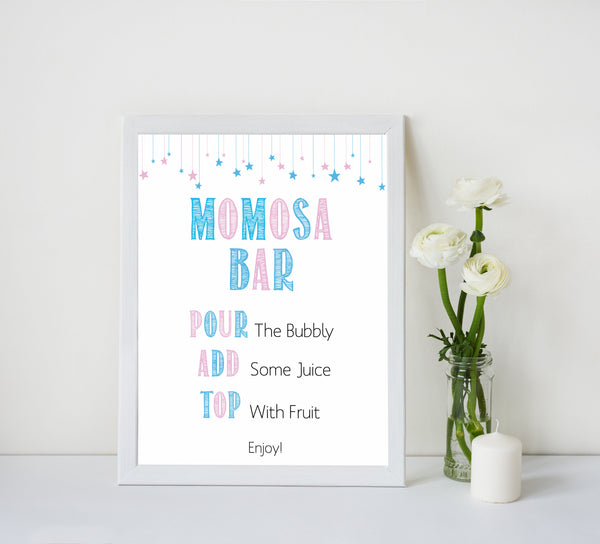 gender reveal baby signs, momosa baby sign, mumosa baby signs, baby shower signs, baby shower idea