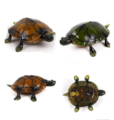 RC Turtle Toy