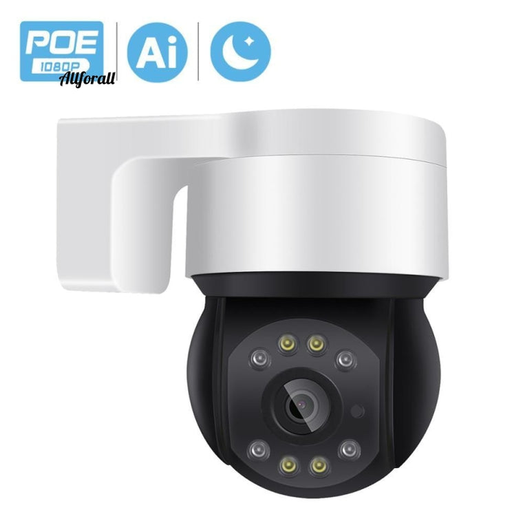 1080P 48V POE Mini PTZ IP-kamera, Utomhus SD-kort AI Human Detection 2MP Dome Camera, IP Audio IR White LED CCTV Security Camera
