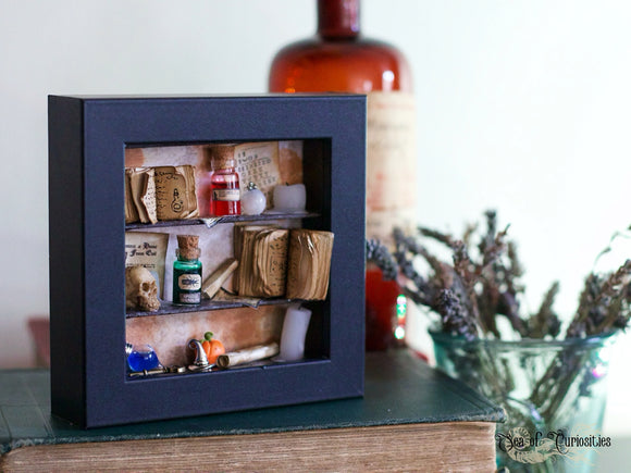 Witch & Wizard Apothecary Miniature Box Frame