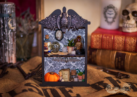 Magical Apothecary Display