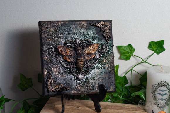 Ornate Moth Canvas Art