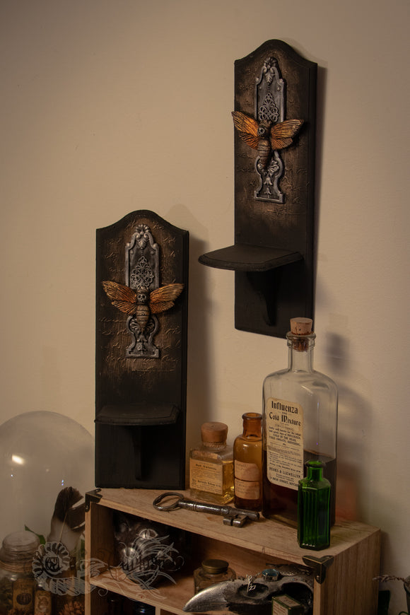 Moth Wooden Wall display shelves - Set of 2