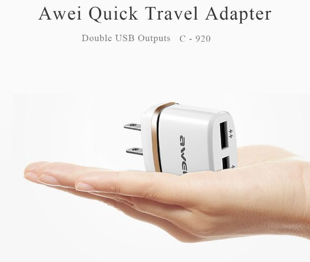 Awei C-920 (2 USB Charger)