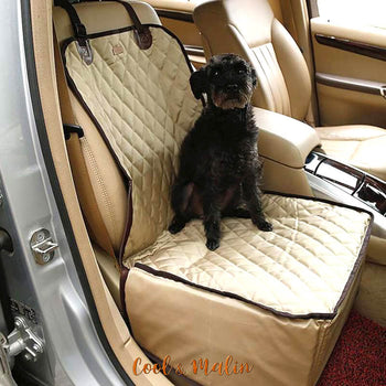 housse protection voiture chien