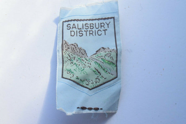 Vintage Scouting Boy Scout Salisbury District Badge  Cloth Patch.