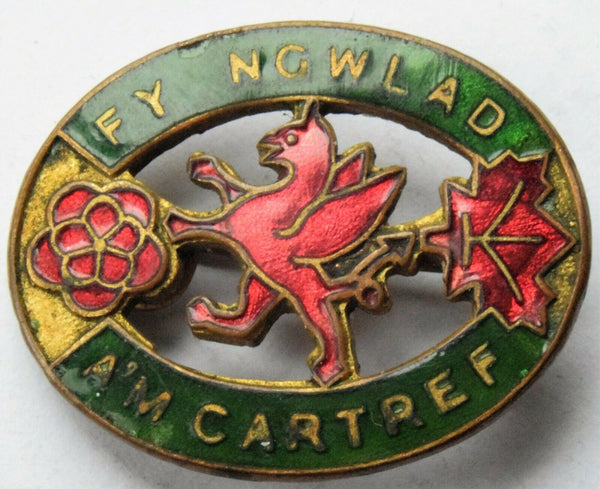 RARE WWII Welsh Women's institute Home Front lapel badge fy ngwlad am cartref