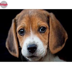 5D Diamond Painting Beagle Kit
