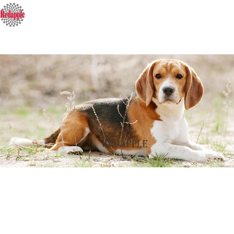 5D Diamond Painting Beagle Laying on the Ground Kit
