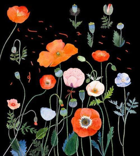 5D Diamond Painting Black Background Poppies Kit