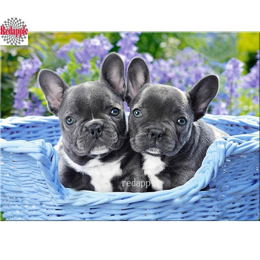 5D Diamond Painting Blue Basket French Bulldog Puppies Kit