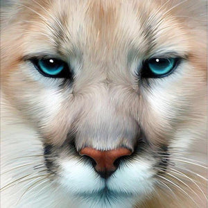 5D Diamond Painting Blue Eyed Cougar Kit