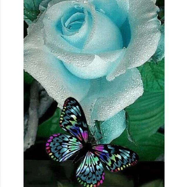 5D Diamond Painting Blue Rose Butterfly Kit