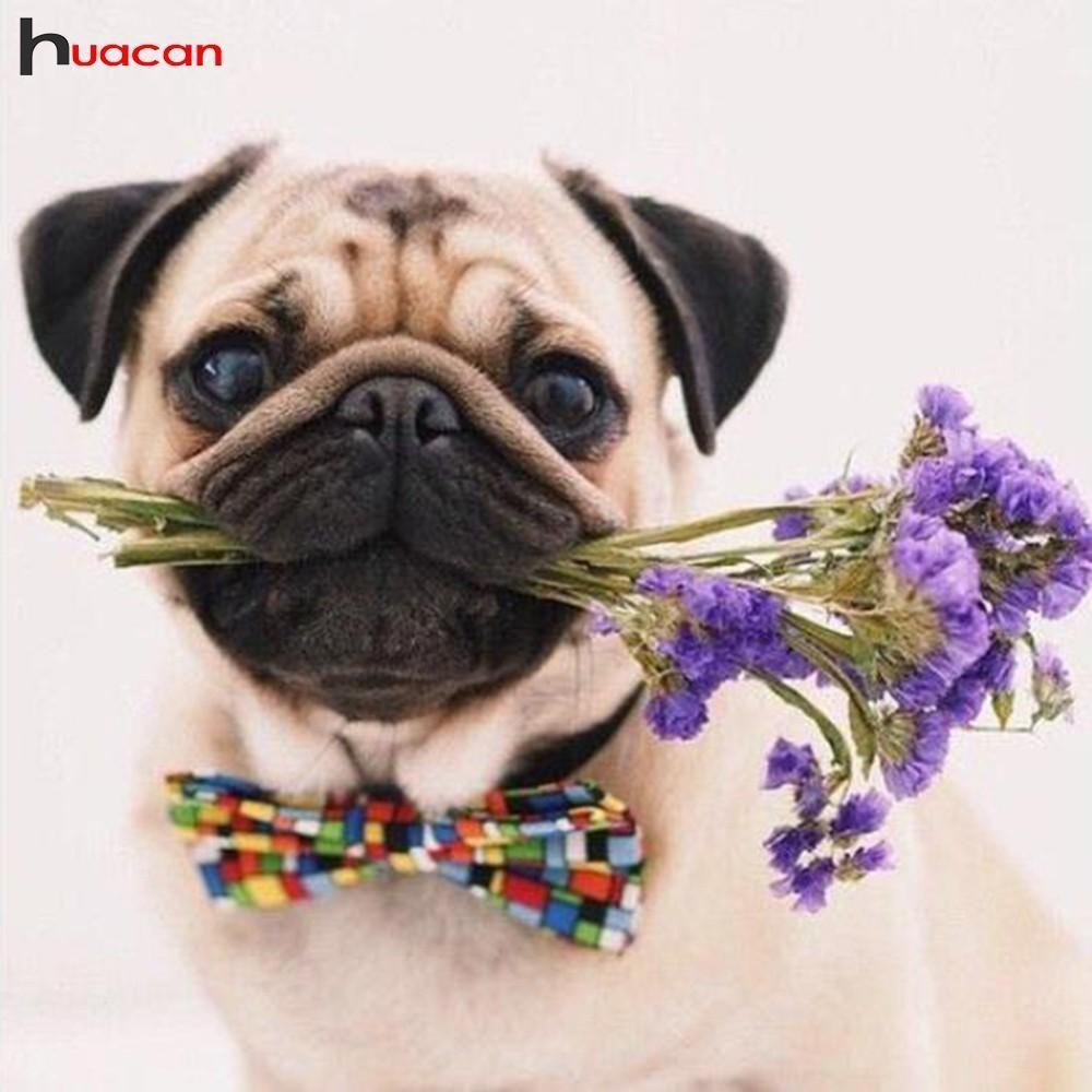 5D Diamond Painting Bow tie Pug with Lavender Bouquet Kit