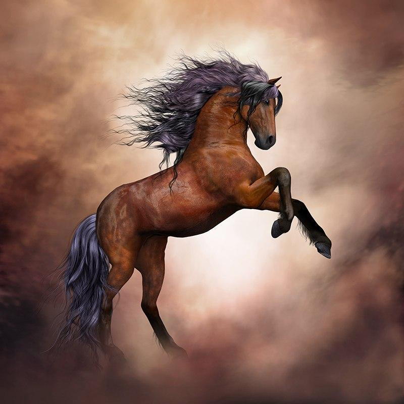 5D Diamond Painting Brown Stallion Kit