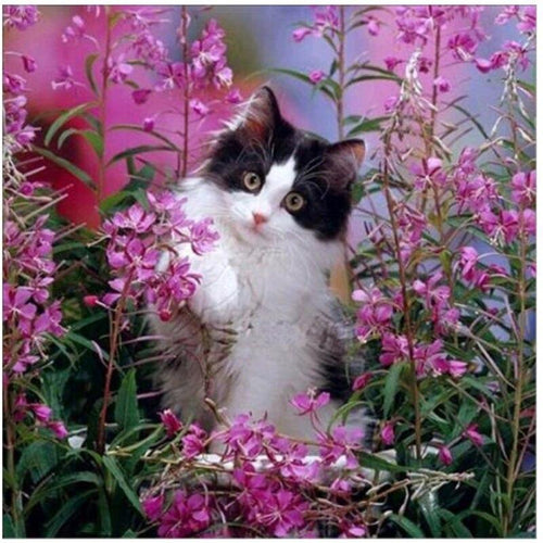 5D Diamond Painting Cat in the Pink Flowers Kit